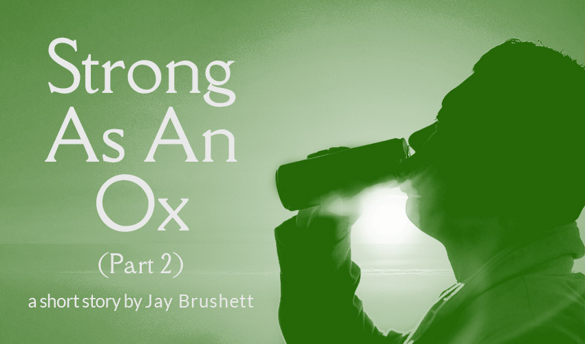 Strong As An Ox (Part 2)